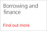 Borrowing and finance