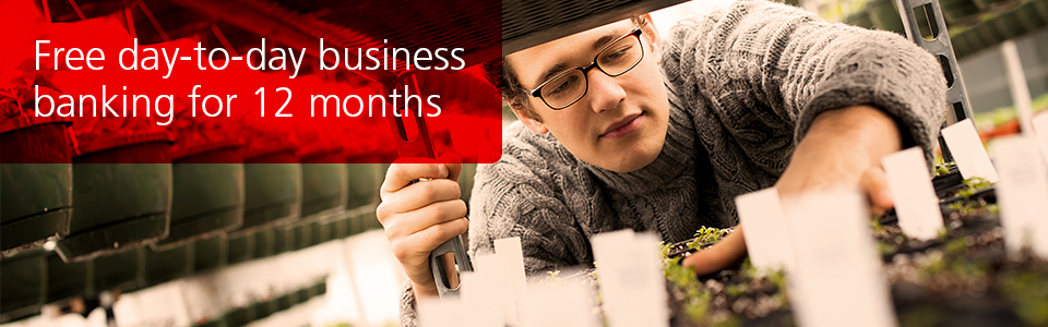 Free business banking for up to 18 months