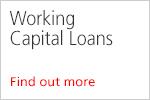 im-ec-690 XS_Working Capital Loans